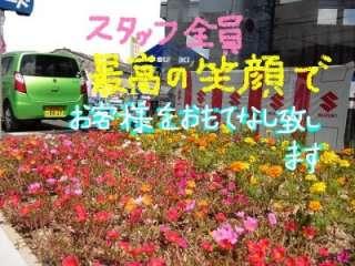 スズキ自販近畿 枚方中央センターの写真2
